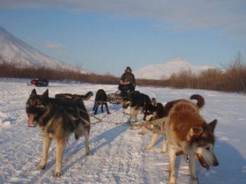 «Зимние забавы на каникулах — вулканы, горные лыжи, снегоход и собачьи упряжки», 6 дней